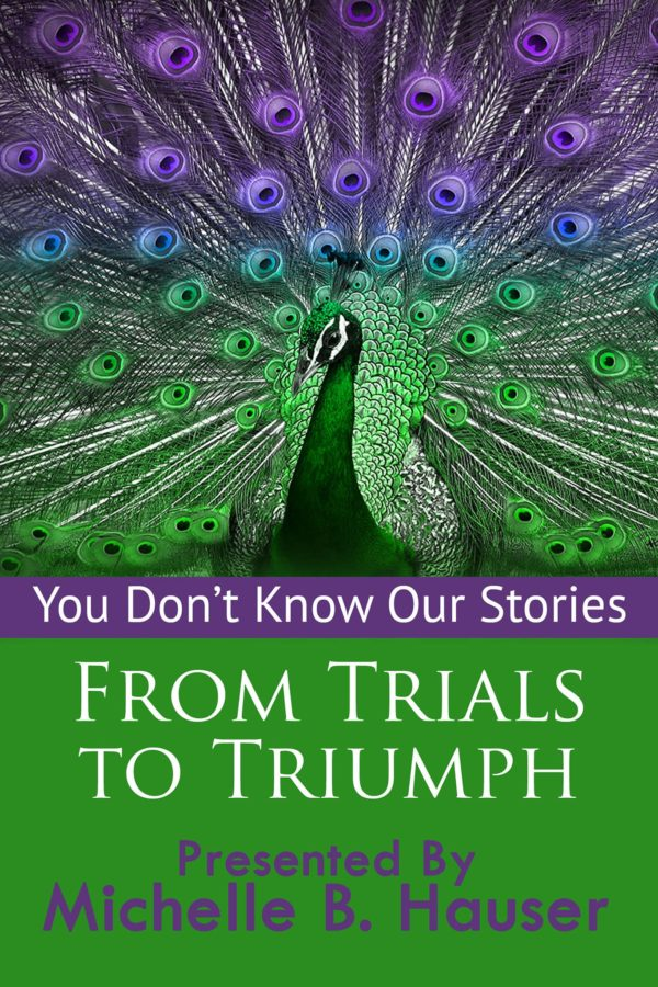 You Dont Know Our Stories: From Trials to Triumph, by Dawn Marie Bornheimer